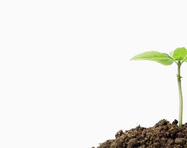 Национална инфраструктура за изследване и иновации в земеделието и храните RINA