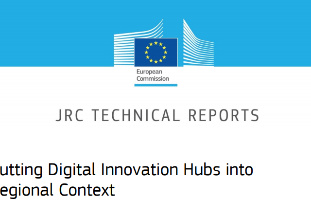 Putting Digital Innovation Hubs into Regional Context