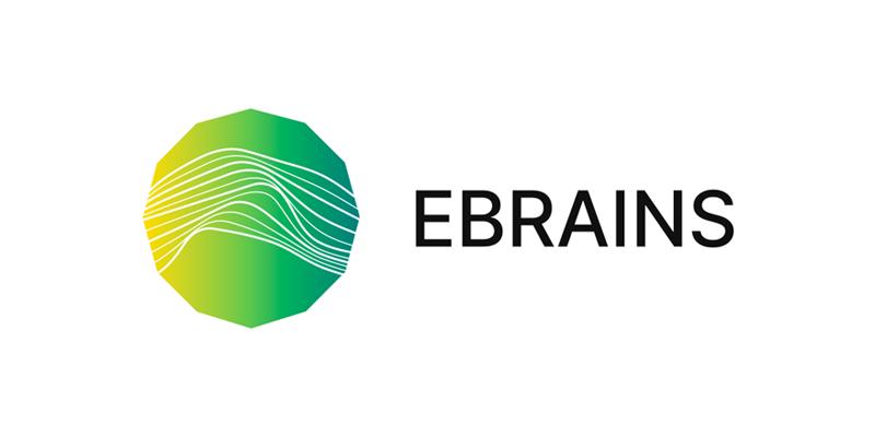 Научноизследователска инфраструктура EBRAINS (Human Brain Project)